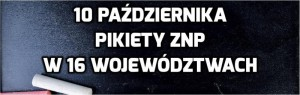 pikieta